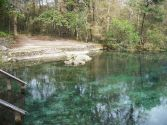 Ichetucknee Springs SP north springs05