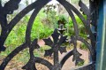 Secret Garden Courtyard thru Gate